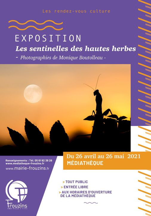 Festival IBO - Monique Boutolleau